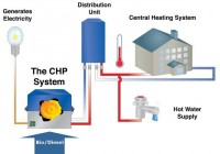 Case Study: CHP Investment Appraisal