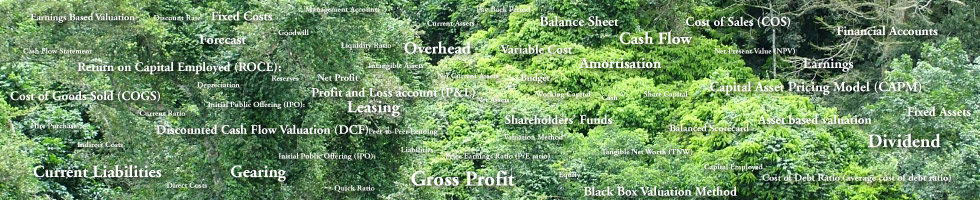 Glossary of Finance related terms